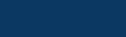 VA excellence logo